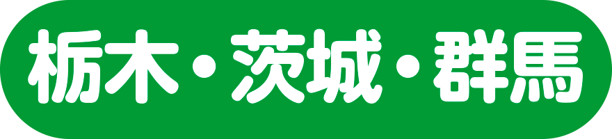 北関東集団個別指導